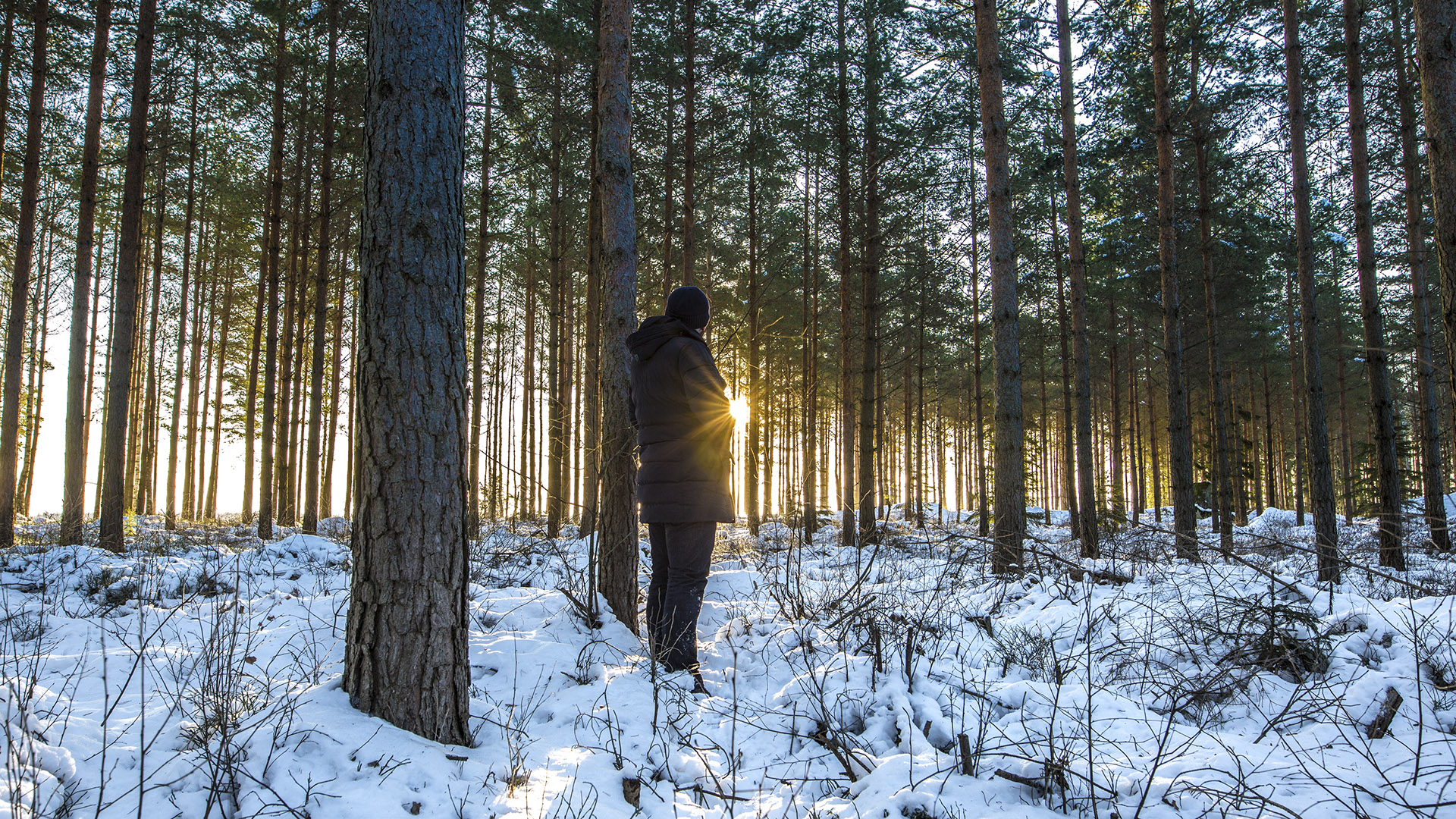 Fotograf Tobias Kramer, Fotoreise nach Südschweden